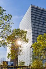 Soleil d'octobre. Paris, octobre 2019 (Bernard Pichon) Tags: paris france bnf bpi760 tour soleil automne fr75 chaleur
