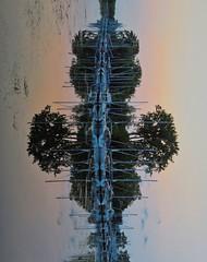 Sideways Reflection (divagoretti) Tags: reflection sideways abstract landscape marina toronto island evening