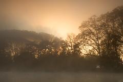 (Laetitia.p_lyon) Tags: fujifilmxt2 parcdelatêtedor lyon sunrise leverdusoleil