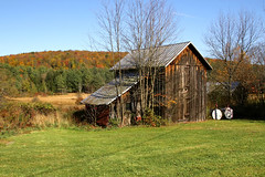 This Ole Shack (Diane Marshman) Tags: old building shed barn weathered barnboards boards siding gray brown black metal roof trees rural country setting mountain fall foliage autumn season red yellow orange green color colors grass weeds bluesky pa pennsylvania state nature