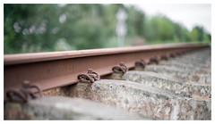 Rail (leo.roos) Tags: trein spoor roest bruin lijn patro staal repe perspec solaag darosa leoroos a7rii 7artisans5011 7artisansdjoptical5011 rust rail railway zuidbeveland sgb kwadendamme stoomtreingoesborsele spoornl zwaaksedijk