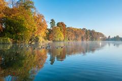 (Laetitia.p_lyon) Tags: fujifilmxt2 lyon parcdelatêtedor lac lake automne autumn fall