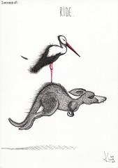 inktober 28: Ride. (Klaas van den Burg) Tags: stork kangaroo inktober humor absurd feather