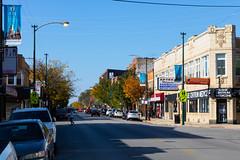 Autmn Colors come to Logan Square (bmayzure) Tags: leaves colorful logansquare chicago illinois autumn fall trees loganboulevard