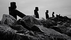 Comme des Moaï (Un jour en France) Tags: moaï île mer sable plage bercksurmer monochrome eos canoneos6dmarkii canonef1635mmf28liiusm black noiretblanc noiretblancfrance france leshautsdefrance polynésie rapanui statue sculpture silhouette tête pierre roche ahus