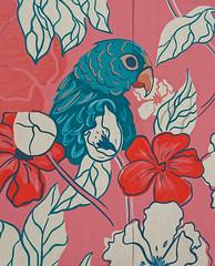 2019-10-26_13-56-37_ILCE-6500_DSC09571_DxO (Miguel Discart (Photos Vrac)) Tags: 16mmf14dcdn|contemporary017 2019 24mm artderue belgie belgique belgium bru brussels bruxelles bxl bxlove createdbydxo divers dxo editedphoto focallength24mm focallengthin35mmformat24mm graffiti graffito grafiti grafitis ilce6500 iso100 sony sonyilce6500 sonyilce650016mmf14dcdn|contemporary017 streetart