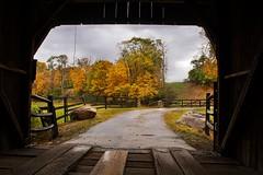 Hidden Valley Bridge (markburkhardt) Tags: