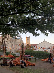 Pumpkin market and view to National Cathedral, Massachusetts Avenue NW, Washington, D.C. (Paul McClure DC) Tags: washingtondc districtofcolumbia oct2019 autumn cathedral historic architecture nationalcathedral tree