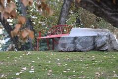 HBM Happy Bench Monday (davebloggs007) Tags: hbm happy bench monday calgary alberta canada