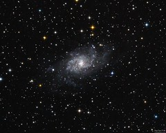 The Triangulum Galaxy (SkyLightDream) Tags: astropicsaustral astrophotography universetoday nightscape starrynight stargazing skymasters astrophoto nightimages milkywaychasers nightshooters natgeospace nightshooterz igastrophotography igerschile loveschile iglatinoamerica visitsouthamerica sonyimages sonyalpha sonyphotogallery astrometrydotnet:id=nova3735442 astrometrydotnet:status=solved