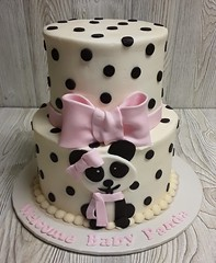 Dalmation Baby Shower