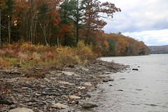 Shoreline at Ceasetown Reservoir - Explored October 29, 2019 (Sandra Mahle) Tags: reservoir water shoreline autumn autumncolors october lake ceasetown ngysa nature naturephotography bigfoot canon ngysaex