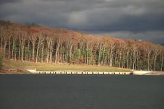 Treeline at Ceasetown Reservoir - Explored October 29, 2019 (Sandra Mahle) Tags: reservoir water autumn fall lake autumncolors gray ngysa naturephotography nature canon bigfoot ngysaex