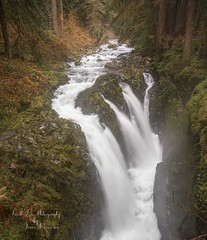 Sol Duc Falls, Olympic Peninsula, Washington (Freshairphotography by Janis Morrison) Tags: solducfalls solducriver olympicnationalpark olympicpeninsula solducwaterfall waterflow waterfalls falls autumn washington nationalpark fallcolors fallingwater mossy vibrant hike coast westcoast pacificnorthwest mist rainforest rocksandwater unusual sidefalls explore explored