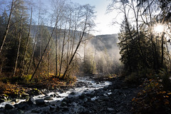 Drifting through the air (Federico Casares) Tags: goldenears sun yellow mist sunrise trees river forest water mountains colors canada purple britishcolumbia nature rocks