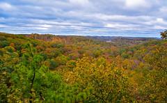 Fall Colors (Explored 10.28.19) (brutus61534) Tags: fall autumn colors leaves seasons rural ohio