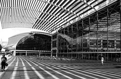 The Shoppes (kiwi photo lover) Tags: singapore marinabay shopping luxury retail complex mall bw monochrome lines patterns light