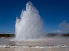 the powerful geyser (kleiner_eisbaer_75) Tags: yellowstone nationalpark usa wyoming natur nature geothermal geyser fountain wasser water eruption fontäne beautiful earth