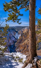 grand canyon of the yellowstone (journey ej) Tags: