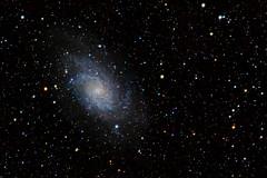 In the Neighborhood (pablo_blake) Tags: m33 messier33 ngc598 triangulumgalaxy spiralgalaxy galaxy nikon astrophotography astrometrydotnet:id=nova3784241 astrometrydotnet:status=solved