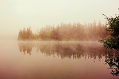 mysterious atmosphere (majka44) Tags: water lake tree mood atmosphere slovakia fog autumn nature landscape reflection mirror waterscape