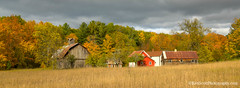 Color Tour ... Bufka farm (Ken Scott) Tags: leelanau michigan usa 2019 october fall autumn colortour 45thparallel hdr kenscott kenscottphotography kenscottphotographycom freshwater greatlakes lakemichigan sbdnl sleepingbeardunenationallakeshore voted mostbeautifulplaceinamerica