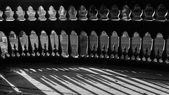 Light & Shadow | Chapter III (M Faran Hassan) Tags: hello pakistan helloworld photography photos photographersofpakistan photojournalism bnw bnwpictures bnwpics bnwart blackandwhite blackandwhitephotos blackandwhitecreators blackandwhiteimage blackandwhiteonly visuals visualsoflife visualsart visual