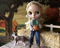 """Hay Ride"" BaD 10/28/19 (Foxy Belle) Tags: doll blythe fall autumn dog hay ride wagon country farm jeand headscarf pumpkin halloween bad day october 28 2019 max liv"