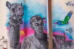Silo Art (Malcom Lang) Tags: art silo artwork mural man camel bird parrot grainsilo building windmill colour color grain cowell southaustralia southernaustralia southern south australia australian aussie farming farmer ringneck ladder loader pole sighn door canoneos6d canon canon100400 canonef canonef100400