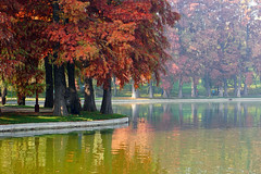 Autumn scene (Dumby) Tags: landscape bucurești românia sector3 park ior titan nature colors autun fall lake