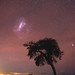 Large Magellanic Cloud at Herron Point, Western Australia