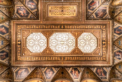 Morgan Library and Museum (20191020-DSC06962) (Michael.Lee.Pics.NYC) Tags: newyork morganlibrary ohny openhousenewyork museum library architecture shiftlens ceiling sony a7rm4 laowa12mmf28 magicshiftconverter symmetry skylight