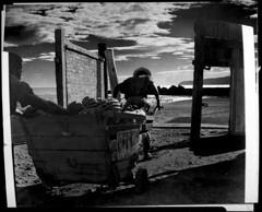 4x5-189-011060 (ndpa / s. lundeen, archivist) Tags: nick dewolf nickdewolf bw blackwhite photographbynickdewolf 1950s late1950s film 4x5 largeformat sheetfilm monochrome blackandwhite 1958 jamaica street worker workers cart wagon wheelbarrow bananas haul hauling load westindies caribbean montegobay people beach clouds gate doors sand push pushing horseshoe horseshoes sign pepsi pepsicola jamaican man men montage photomontage cutandpaste
