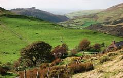 Cwm Maethlon, Meirionnydd (Rhisiart Hincks) Tags: landscape tirlun maezioù paisaje tírdhreach paisaia cruthtìre cwmmaethlon meirionnydd gwynedd a'chuimrigh kembra wales cymru kembre gales galles anbhreatainbheag 威爾斯 威尔士 wallis uels kimrio valbretland 웨일즈 велс gallas walia เวลส์ ويلز uells ουαλία velsa velsas уельс уэльс уелс ウェールズ 威爾士 ue eu ewrop europe eòrpa europa aneoraip deireadhfómhair andàmhair october mishydref mizhere octubre octobre október październik coed zuhaitzak trees crainn gwez arbres craobhan hydref autumn diskaramzer udazken amfoghar automne