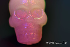 Fake skull - Macro mondays (Joaquim F. P.) Tags: adapter fake macromondays micronikkor60mmf28afd adapted nexnik novoflex skull cráneo cabeza plastic plástico llavero halloween macro micronikkor 60mm tabletop studio light painting long exposure larga exposición experimental experimento luces led color tricolor rgb opalescencia joaquimfp tarragona spain lighttrail esteladeluz sony ilce alpha live composite livecomp 5100 a5100 app camera pmca time stacking stack auto automatic