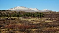 Þingvellir (Ásmundur H) Tags: þingvellir botnssúlur iceland