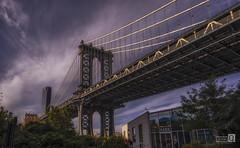 Made in New York. (Manhattan bridge) (JoseQ.) Tags: puente bridge manhattan dumbo columna construccion brookling newyork usa estadosunidos norteamerica riohudson river eastriver agua acero arquitectura puentecolgante