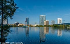D81_1110 (davidmylesphotography) Tags: skyline eola lake orlando florida water buildings swan