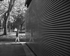 autumn walk (miguel_osvaldo) Tags: 2019 streetphotography street blackandwhite people fujifilm acros xt2 museum park spicollective