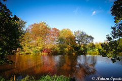 The Only Difference Between A Good Day And A Bad Day Is Your Attitude (_Natasa_) Tags: derby park markeatonpark england autumn colours nature water trees october canon canoneos7d widelens sigma1020mm natasaopacic natasaopacicphotography reflections
