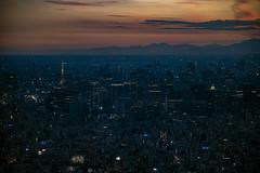 Tokyo by Night (MLopht Photography   Dortmund) Tags: japan tokyo sumida chūō minato skytree turm tower aussichtsturm stadt city metropole metropolregion luftbild gebäude haus häuser hochhäuser geschäftsviertel tokyotower himmel wolken fluss canon eos r canoneosr 24105mm availablelight nachaufnahme