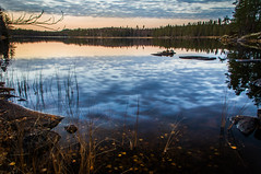 Late october (mabuli90) Tags: finland lake water forest tree autumn fall leaves rock reflection sky sunset night dusk grass clouds