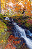 ~ Autumn Waterfall ~