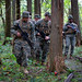 U.S. Marines sweep through the forest during an IED training event as part of exercise Fuji Viper 20-1