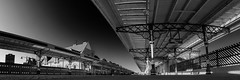 Platform 2a, Middlesbrough Station (Brett T) Tags: dualiso transport station rail travel blackandwhite bw