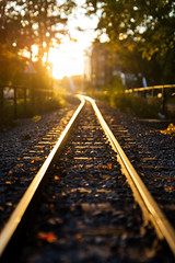 Uppsala, September 26, 2019 (Ulf Bodin) Tags: järnvägsspår höst rail sunset transportanläggning sweden outdoor lännakatten autumn canonrf85mmf12lusm uppsala järnväg solnedgång bergsbrunnaparken motivämnesord canoneosr sverige railroad httpkulturnavorg1ce81c69576f4a3080de4b7825994eb1 httpkulturnavorg7eb6b96356ec4c30b33dd7d756b9a261 httpkulturnavorgaa33ffa059c643e59798f8e323026919 uppsalalän