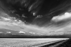 Les éoliennes (Jacques Isner) Tags: eolienne plat ciel cloud pentax pentaxart pentaxflickraward pentaxk1 samyang14mm samyang flickrunitedaward jacquesisner