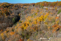Past Its (Dundas) Peak? (amillionwalks) Tags: dundaspeak spencergorge october mylastvacationdayoftheyear birthday hike climb sun colours jammedpacked view stunning high foliage fall dontfall autumn trees escarpment