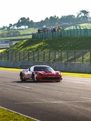 458 GT3 (Mattia Manzini Photography) Tags: ferrari supercar supercars cars car carspotting carbon nikon d750 racecar racetrack automotive automobili auto automobile autodromo mugello mugellocircuit finalimondiali finalimondialiferrari 458 458gt3 gt3 v8