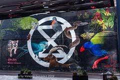 Brick Lane street art, Shoreditch, London, east end, October 2019 (pixiemushroom) Tags: bricklane streetart photography extinctionrebellion eastend shoreditch london nikon d750 sigma50mm14